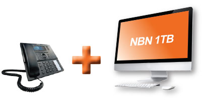 your-local-telecom-nbn-bundle-100gb